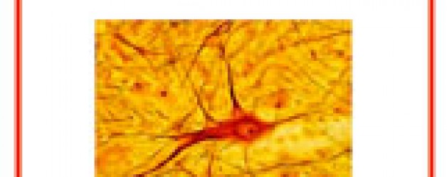 "MESA REDONDA sobre ""Experiencias con Esclerosis Lateral Amiotrófica"""